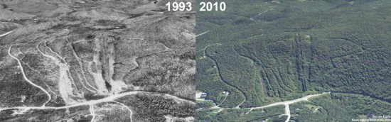 Dutch Hill Aerial Imagery, 1993 vs. 2010
