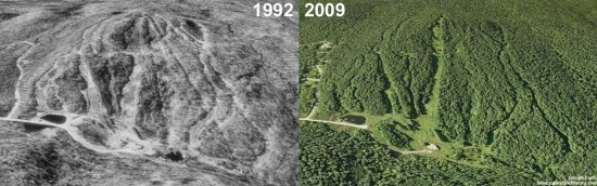 Snow Valley Aerial Imagery, 1992 vs. 2009